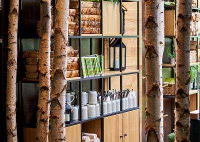 interior design photography showing birch trees in front of shelving unit with wood flooring and wood piles