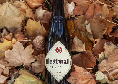 Westmalle Trappist Tripel consumed in Bruges, Belgium.